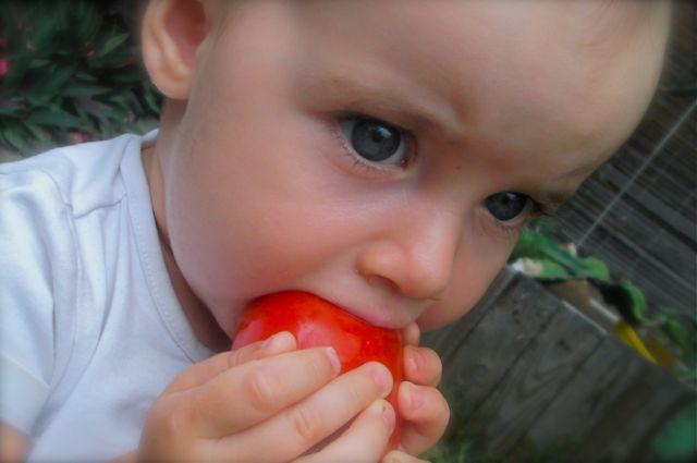 Bébé adore manger les tomates