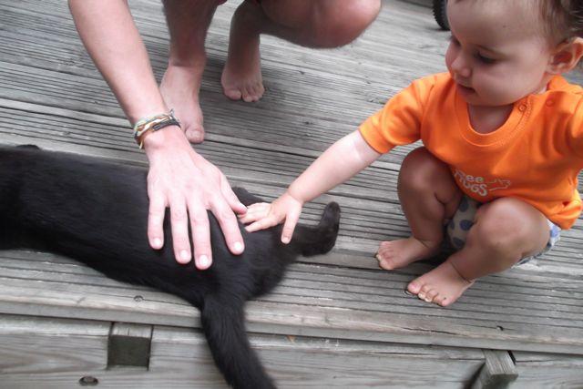 Séance Free hugs avec le chat, et maman? Zouh sous le nez!