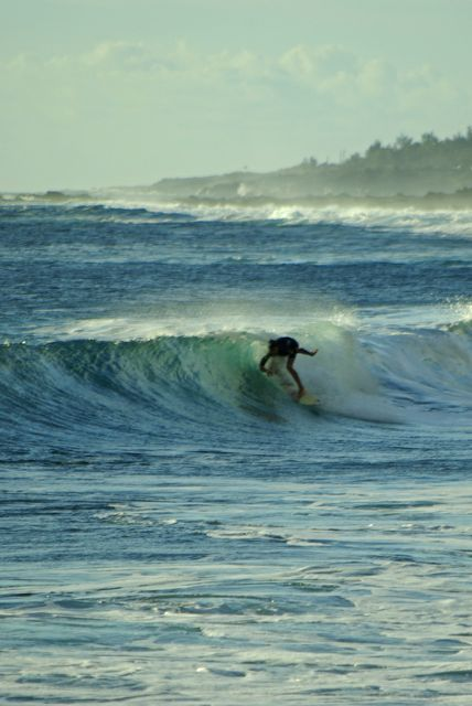 Le surf, un sport qui décline à la Réunion (risque requin)