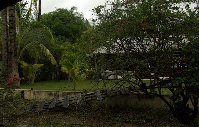 Des voisins ont eu leur clôture arrachée à cause des chutes des arbres