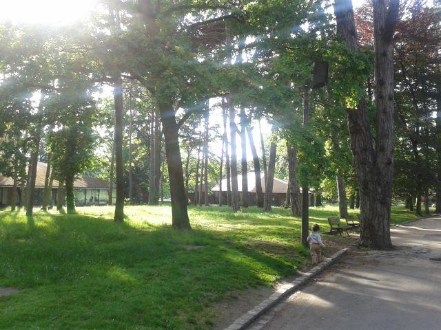 parcfloral-arbres
