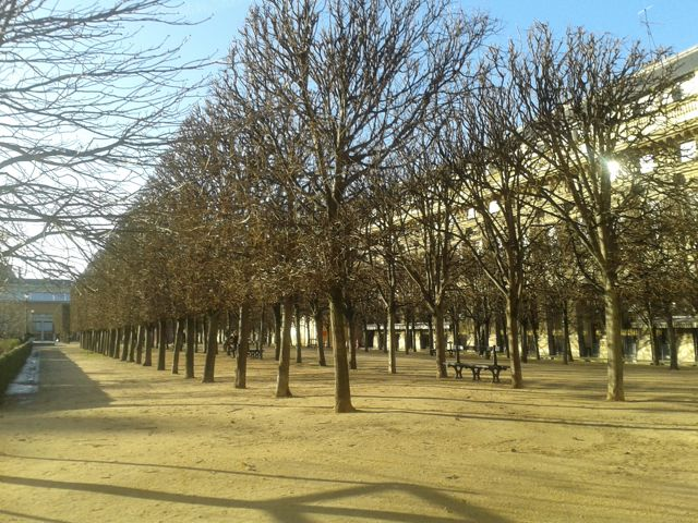 Paris-balade-jardins du palais royal