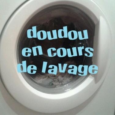 lavage-doudou-en-cours